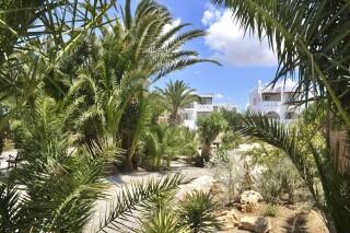 Garden Medusa Beach Resort in Naxos