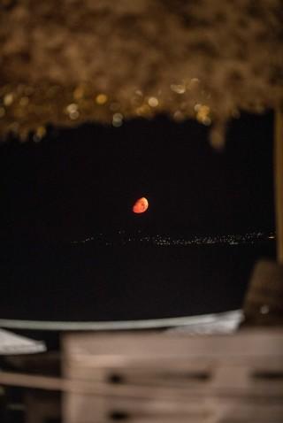 earth bar medusa resort moon