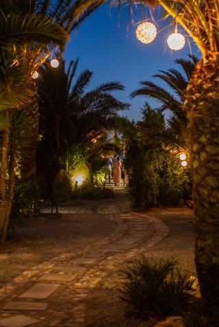 garden medusa resort by night