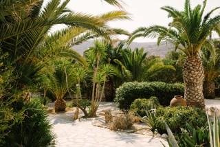 garden medusa resort naxos