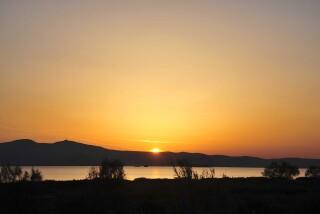 plaka-beach-medusa-resort-suites-in-naxos