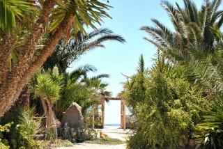 the garden medusa resort area